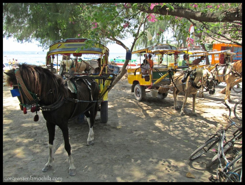 Calesa Gili Trawangan Lombok Indonesia