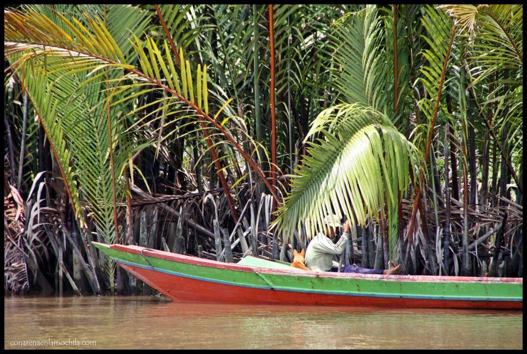 Entrada Tanjung Puting