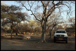 Onguma camping Etosha Namibia