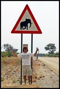 Señal elefante