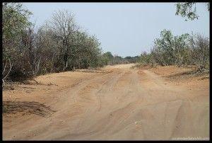 Camino Chobe Riverfront