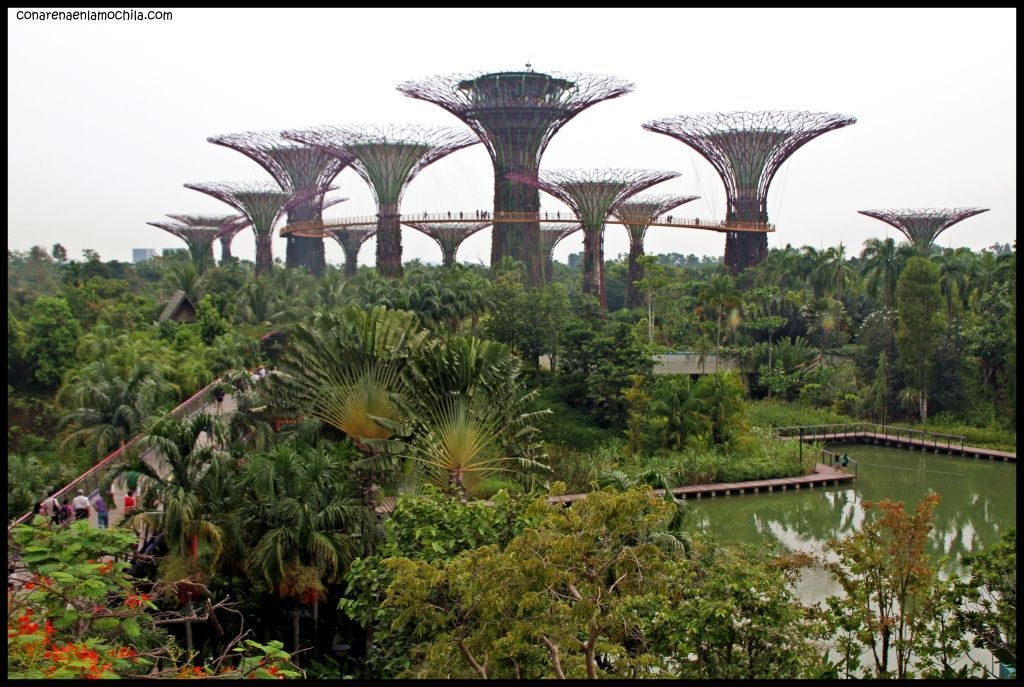 Gardens by the Bay - Singapur