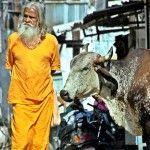 India: Jodhpur, Pushkar y Jaipur