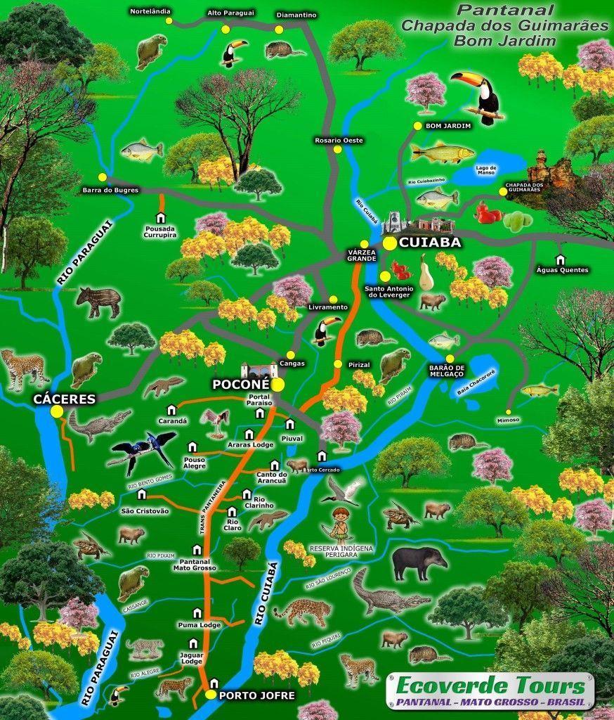 Mapa Pantanal Brasil