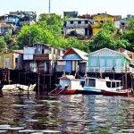 Qué ver en Manaos, una ciudad en mitad del Amazonas