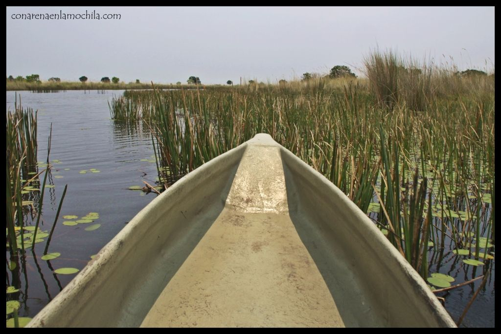 Mokoro Delta Okavango
