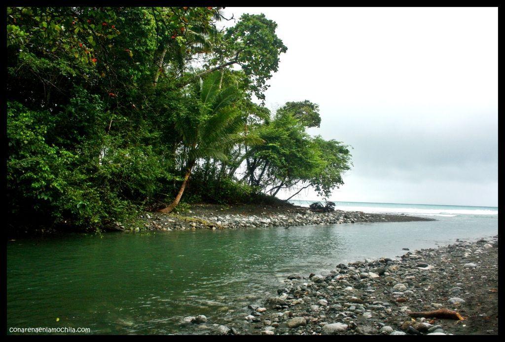 Río Madrigal Corcovado Costa Rica