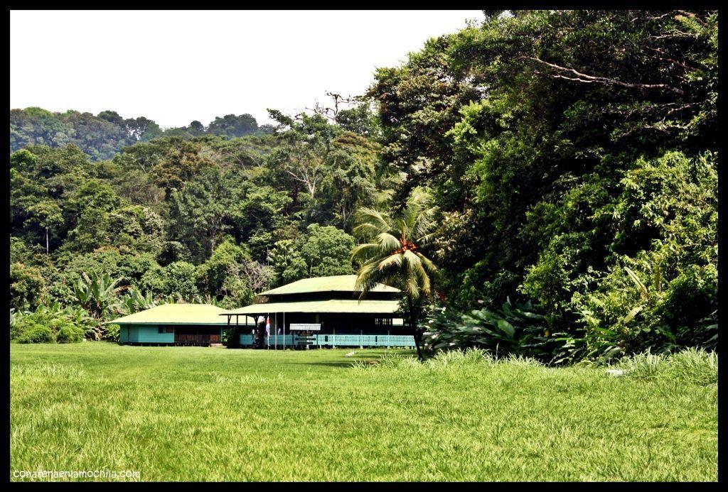 Sirena Corcovado Costa Rica