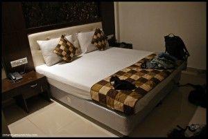 Arjun Hotel Delhi India
