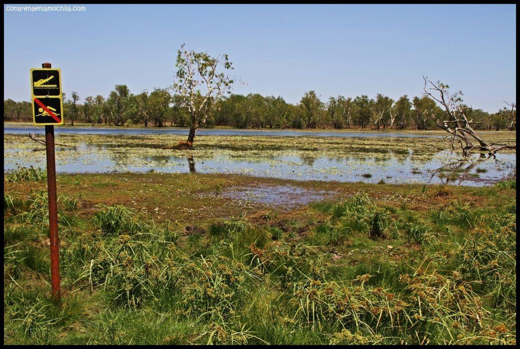 Sandy Billabong Kakadu - Australia