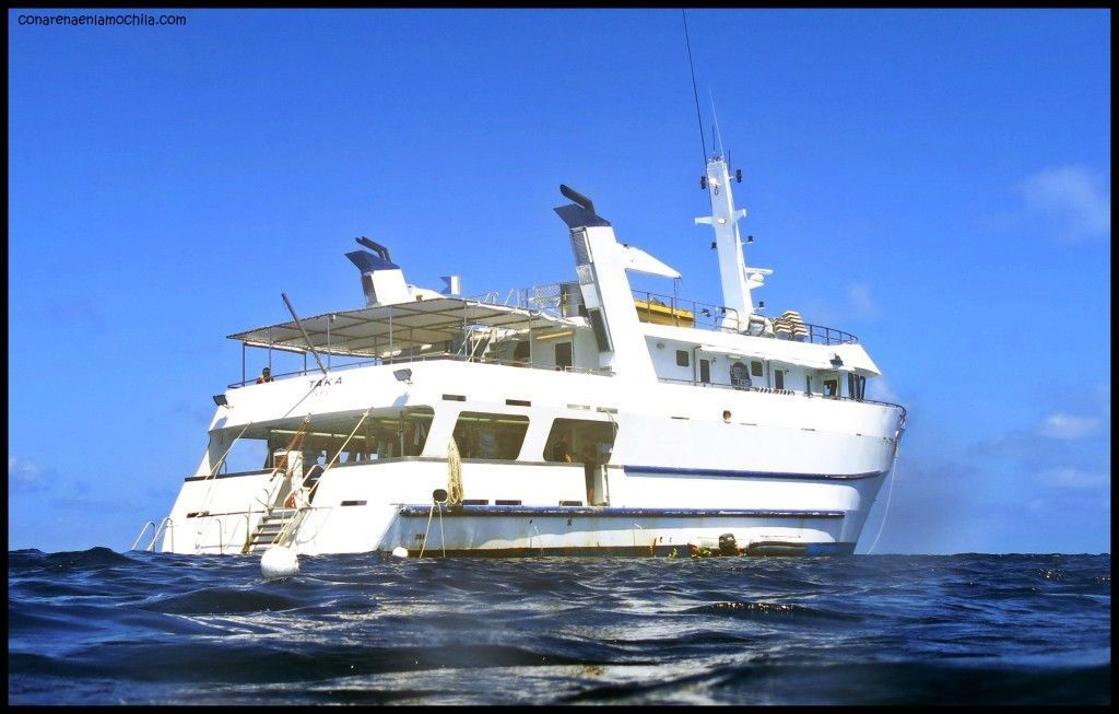 Taka Liveaboard Great Barrier Reef Australia