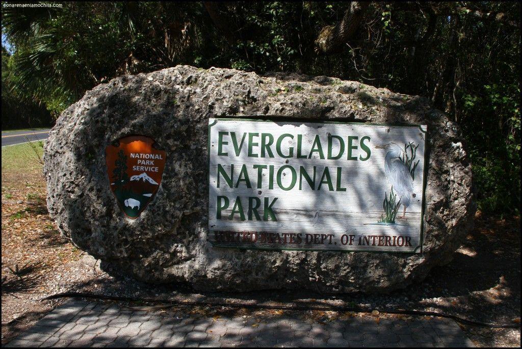 Everglades National Park Florida Estados Unidos