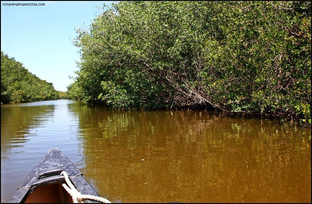 Everglades National Park Flori