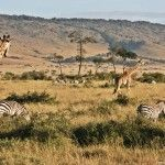 Un sueño llamado África: Kenia, Tanzania y Zanzíbar