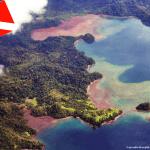 Costa Rica 2009: Reserva Biológica Isla del Caño