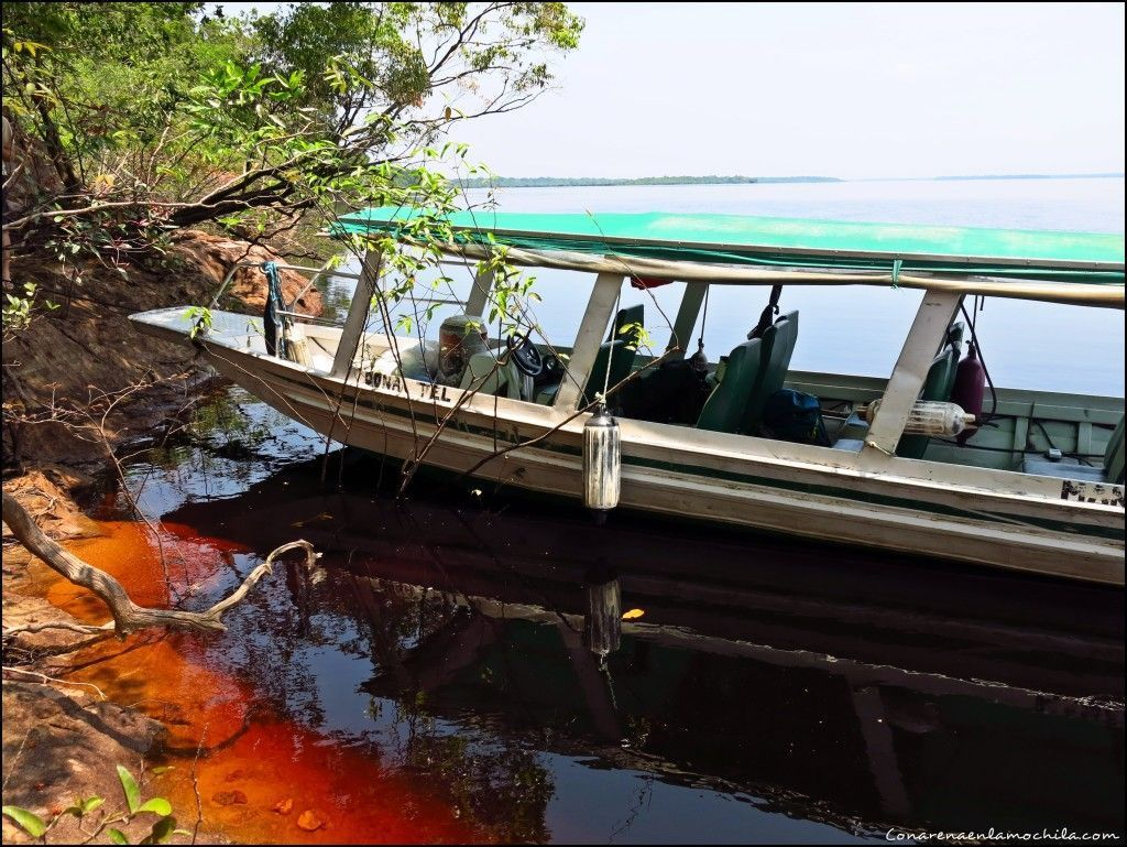 Río Negro Amazonas Brasil