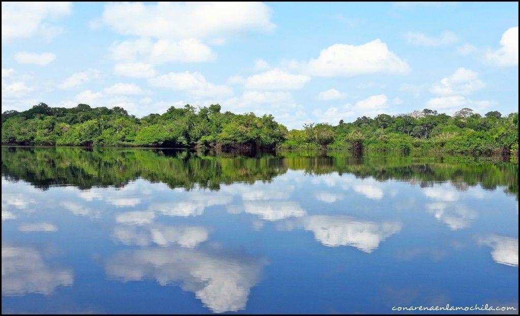 Parque Nacional de Jaú Amazonas Brasil